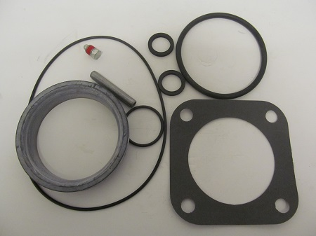 Hale 30BD Valve Repair Kit-3